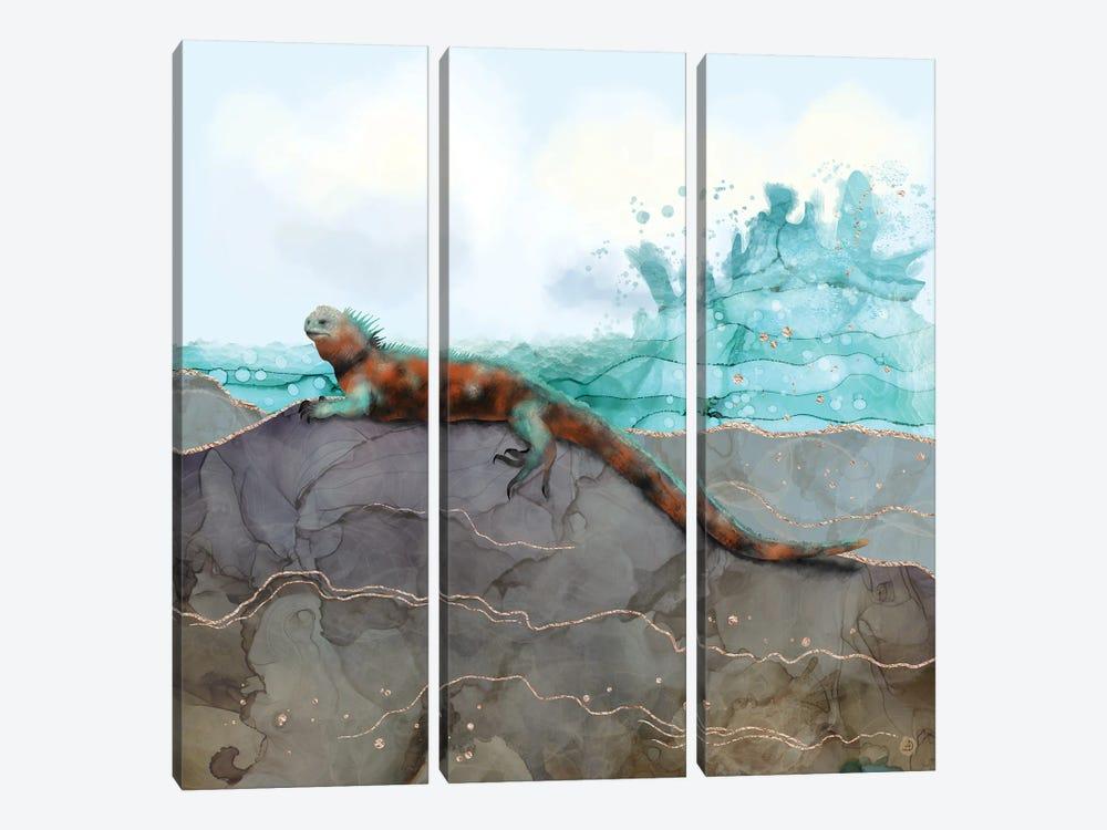 Marine Iguana On The Seashore by Andreea Dumez 3-piece Canvas Art Print