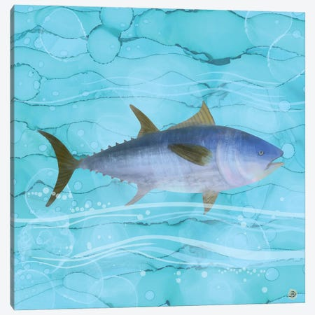 Atlantic Bluefin Tuna Fish Canvas Print #AEE2} by Andreea Dumez Canvas Wall Art