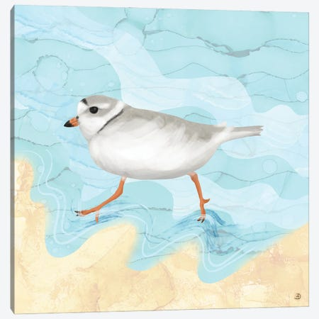 Piping Plover Running On The Beach Canvas Print #AEE35} by Andreea Dumez Canvas Wall Art