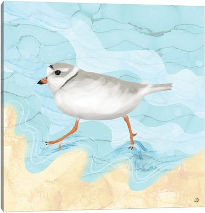 Piping Plover Running On The Beach Canvas Art Print