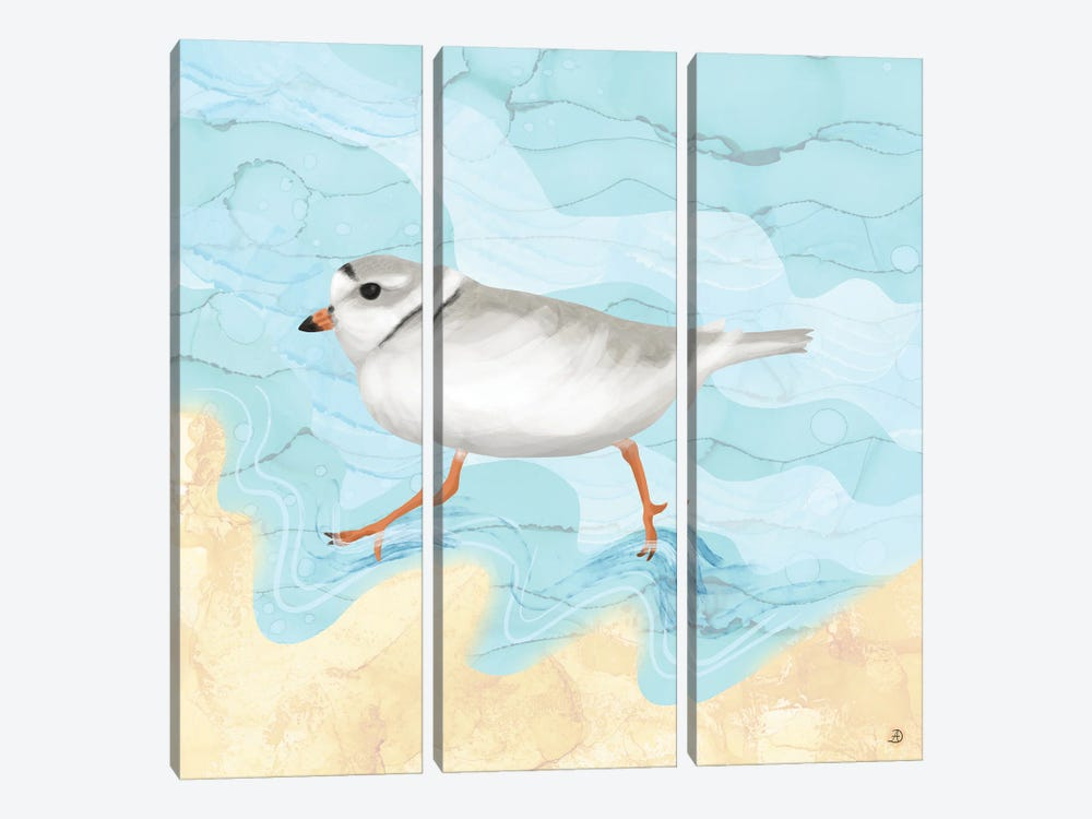 Piping Plover Running On The Beach by Andreea Dumez 3-piece Canvas Wall Art