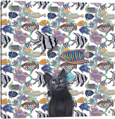A Black Cat Looking At An Exotic Fish Tank Canvas Art Print