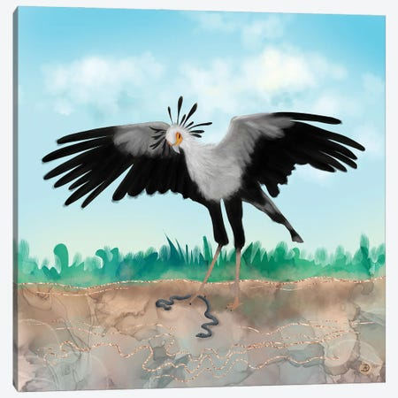 The Secretary Bird And The Snake - African Wildlife Creatures Canvas Print #AEE55} by Andreea Dumez Canvas Art