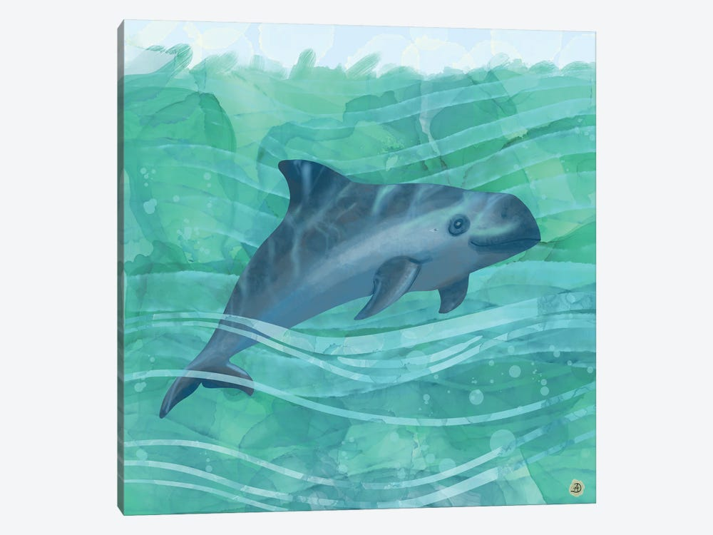 The Vaquita Porpoise Swimming In Emerald Waters by Andreea Dumez 1-piece Canvas Print