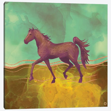 Wild Horse In The Burning Desert Canvas Print #AEE58} by Andreea Dumez Canvas Art Print