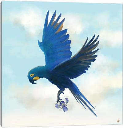Lear's Macaw Bird Flying With An Orchid Flower Canvas Art Print