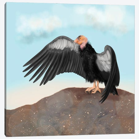 California Condor Spreading Its Wings Canvas Print #AEE64} by Andreea Dumez Art Print