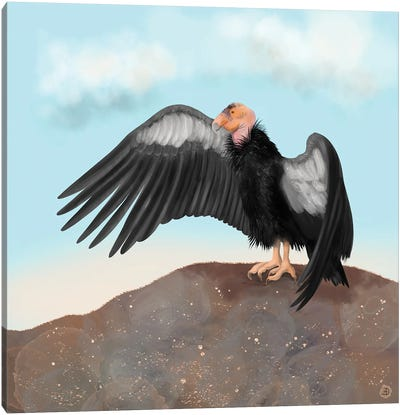 California Condor Spreading Its Wings Canvas Art Print