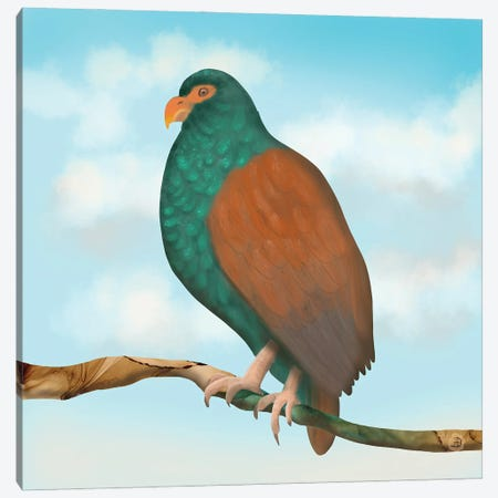 The Tooth Billed Pigeon (Little Dodo) Canvas Print #AEE65} by Andreea Dumez Canvas Print