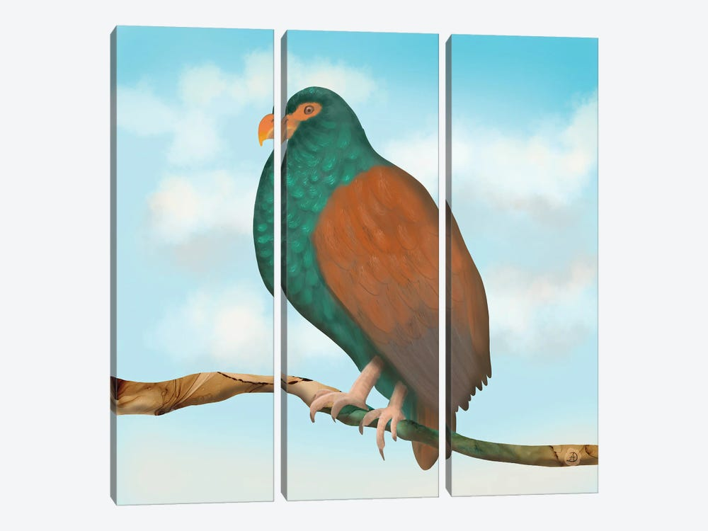 The Tooth Billed Pigeon (Little Dodo) by Andreea Dumez 3-piece Canvas Print