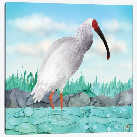 Crested Ibis - Japanese Rare Bird Canvas Print #AEE66} by Andreea Dumez Canvas Print