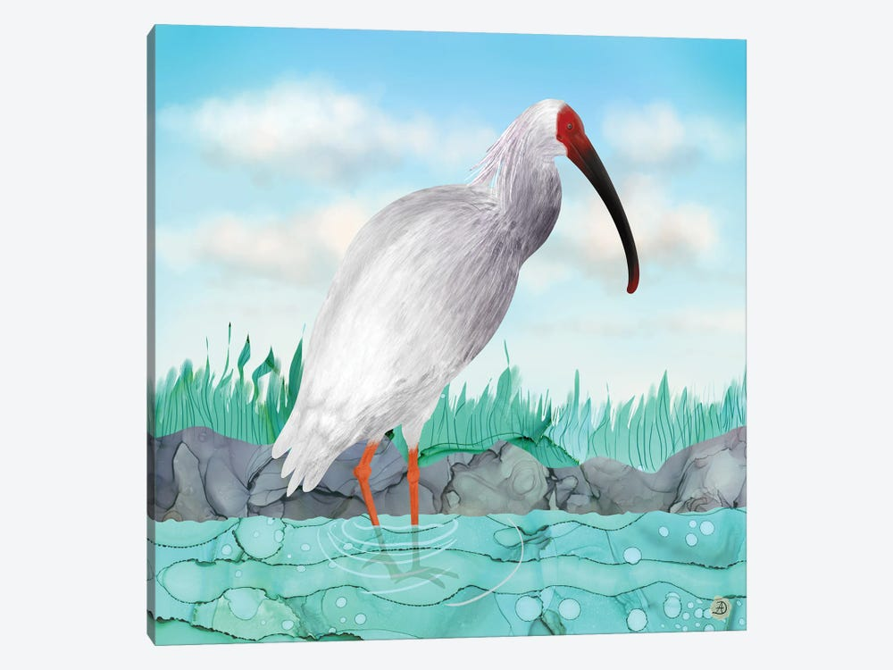 Crested Ibis - Japanese Rare Bird by Andreea Dumez 1-piece Canvas Wall Art