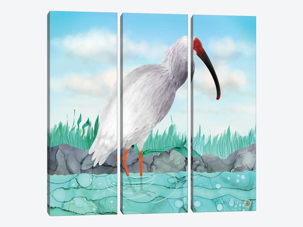 Crested Ibis - Japanese Rare Bird by Andreea Dumez 3-piece Canvas Art