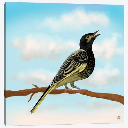Regent Honeyeater - Australian Rare Bird Canvas Print #AEE67} by Andreea Dumez Canvas Art Print