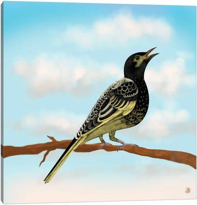 Regent Honeyeater - Australian Rare Bird Canvas Art Print