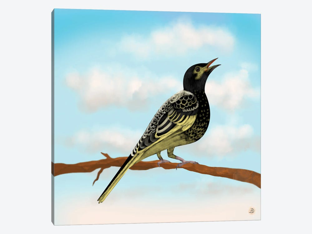 Regent Honeyeater - Australian Rare Bird by Andreea Dumez 1-piece Canvas Art Print