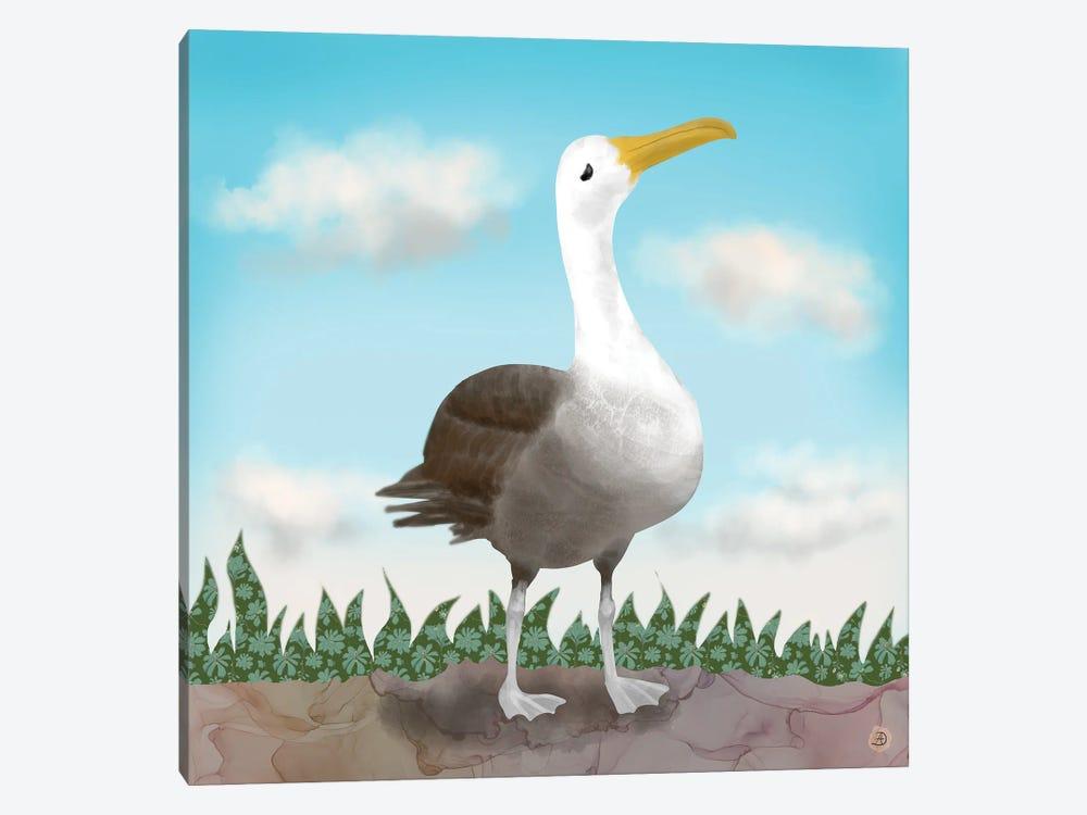 Galapagos Waved Albatross by Andreea Dumez 1-piece Art Print
