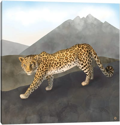 Amur Leopard In The Mountains Canvas Art Print