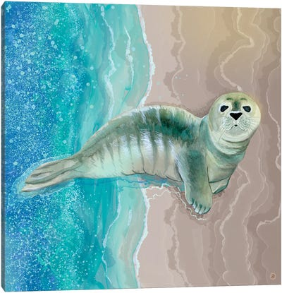 Gray Seal Pup - Where The Ocean Meets The Sand Canvas Art Print