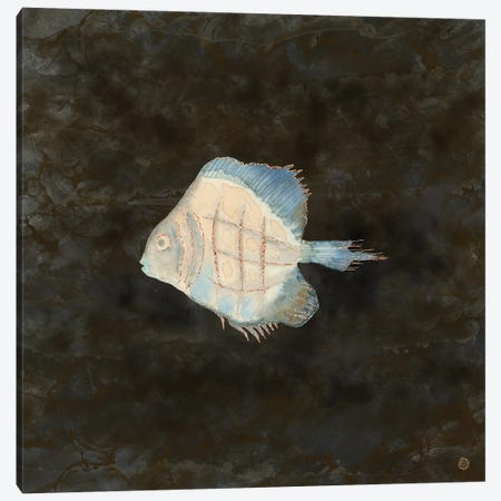 Australian Exotic Fish In Vintage Earth Tones Canvas Print #AEE79} by Andreea Dumez Art Print