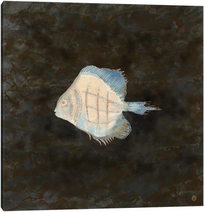 Australian Exotic Fish In Vintage Earth Tones Canvas Art Print