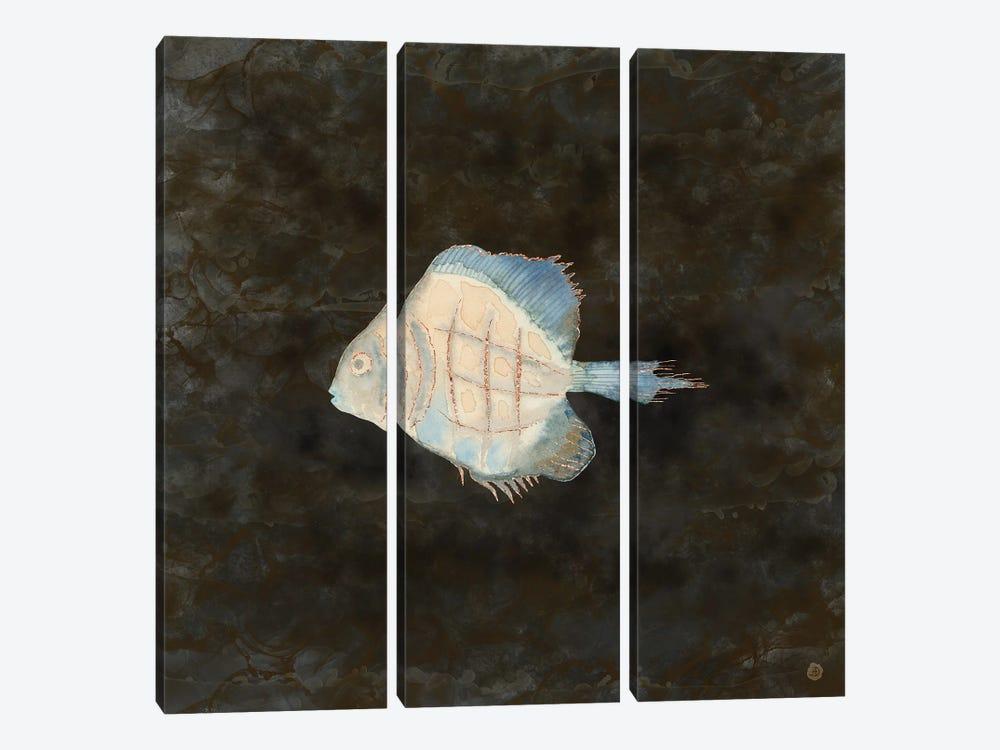 Australian Exotic Fish In Vintage Earth Tones by Andreea Dumez 3-piece Canvas Art