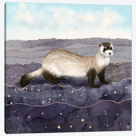 The Black Footed Ferret Canvas Print #AEE80} by Andreea Dumez Canvas Artwork