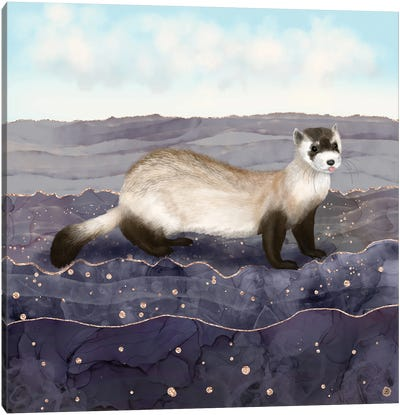 The Black Footed Ferret Canvas Art Print