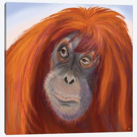 Seriously Red-Haired Sumatran Orangutan Canvas Print #AEE82} by Andreea Dumez Canvas Wall Art