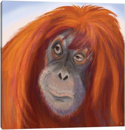 Seriously Red-Haired Sumatran Orangutan Canvas Art Print