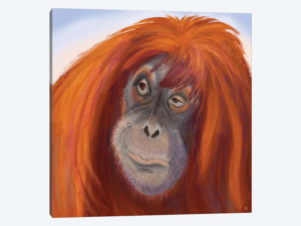Seriously Red-Haired Sumatran Orangutan by Andreea Dumez 1-piece Canvas Artwork