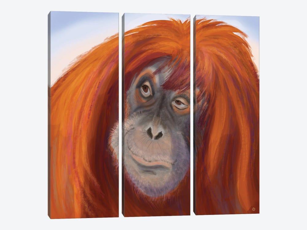 Seriously Red-Haired Sumatran Orangutan by Andreea Dumez 3-piece Canvas Art