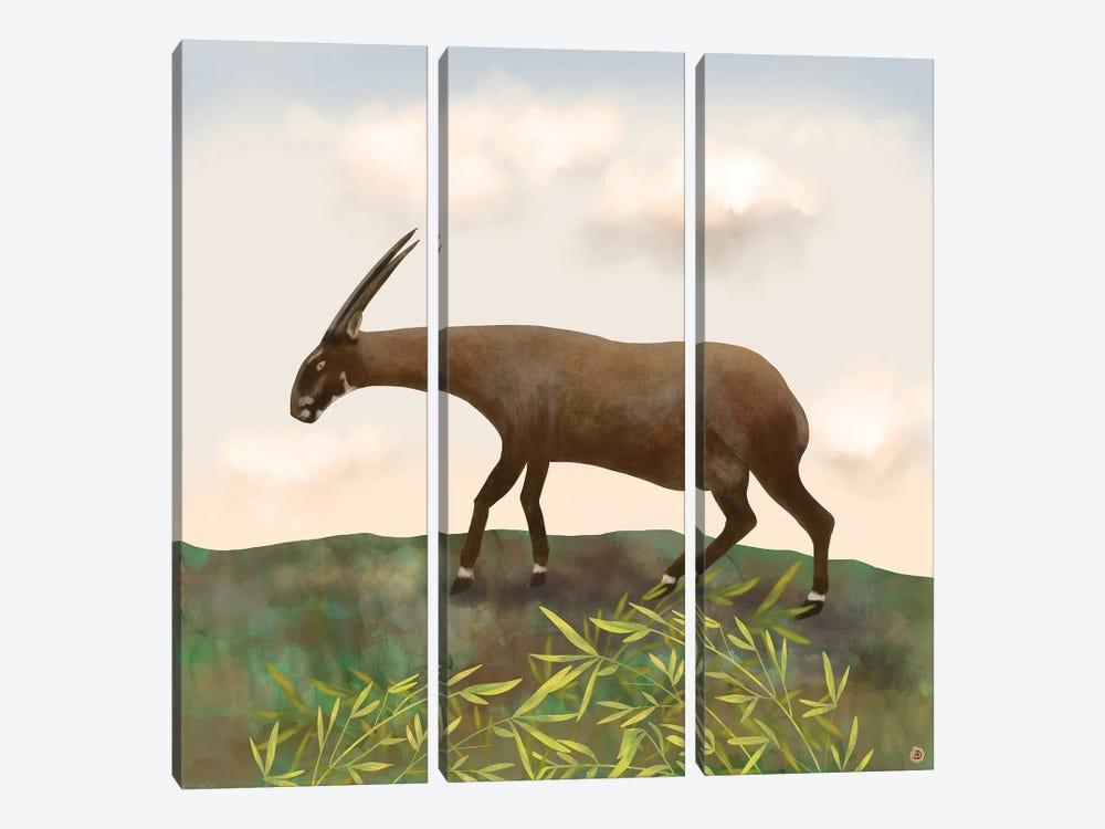 Saola - The Asian Unicorn - Rarest Animal On Earth by Andreea Dumez 3-piece Canvas Print