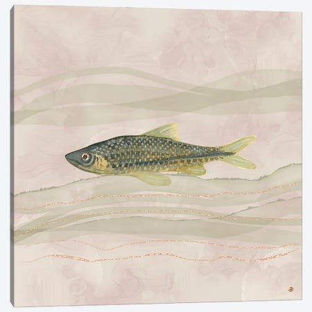 Carp Fish Swimming In Cloudy Water Canvas Print #AEE85} by Andreea Dumez Canvas Print