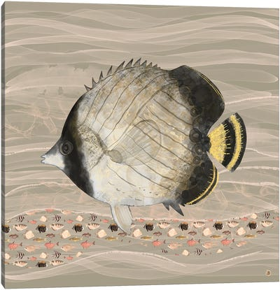 Butterfly Fish In Neutral Earth Tones Canvas Art Print
