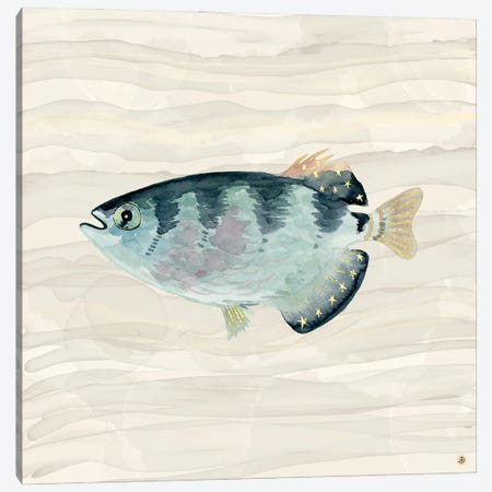Patriot Fish Swimming Canvas Print #AEE88} by Andreea Dumez Canvas Wall Art