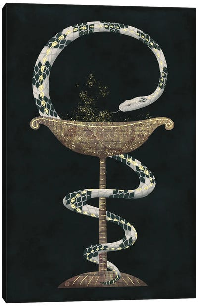 The Bowl Of Hygieia And The Rattlesnake Canvas Art Print
