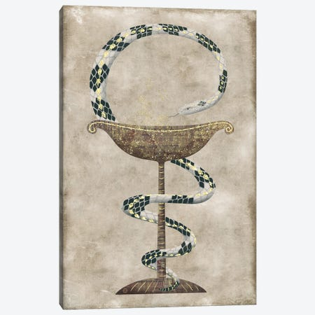 The Serpent Around The Bowl Of Hygieia - Pharmacy Symbol Canvas Print #AEE90} by Andreea Dumez Art Print