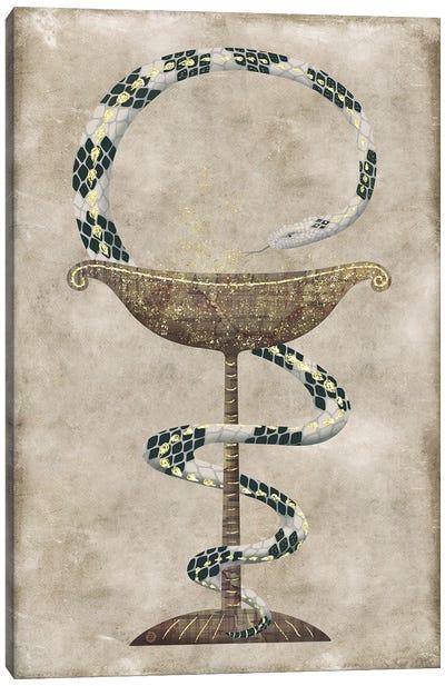 The Serpent Around The Bowl Of Hygieia - Pharmacy Symbol Canvas Art Print