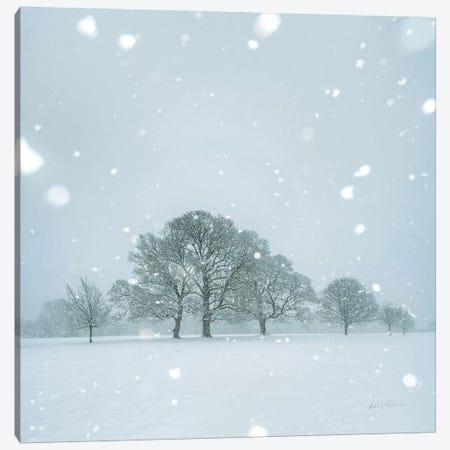 Winter Landscape I 3-Piece Canvas #AEI12} by Andre Eichman Canvas Art Print