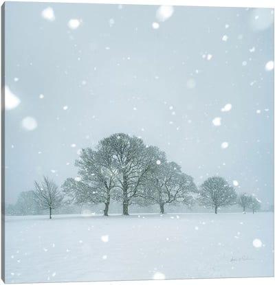 Winter Landscape I Canvas Art Print