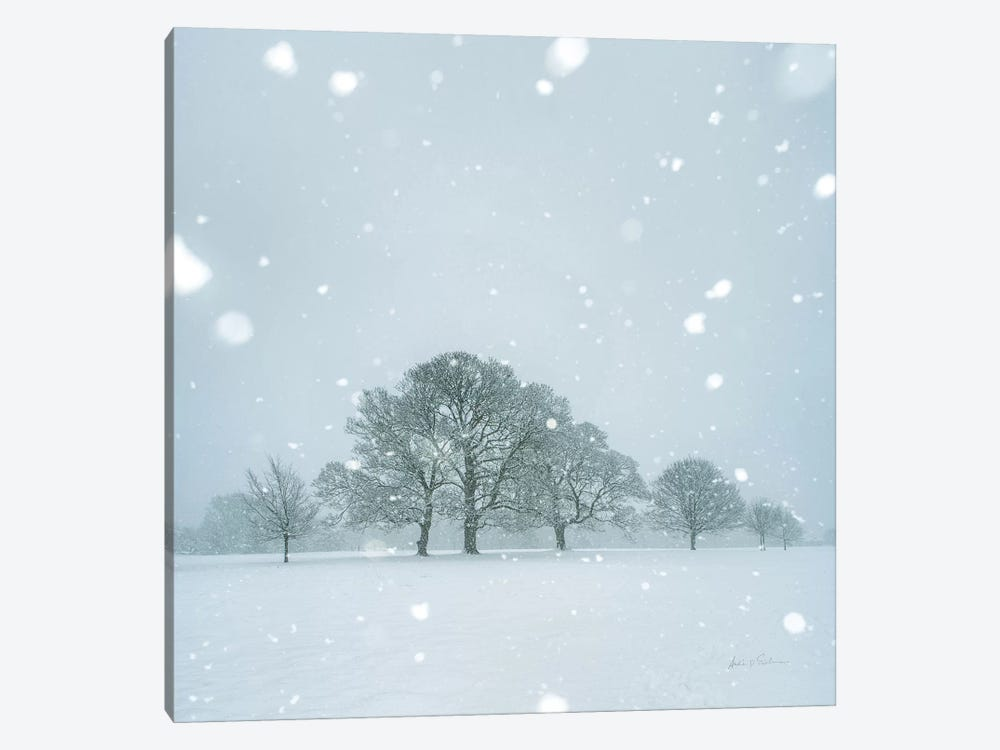 Winter Landscape I by Andre Eichman 1-piece Canvas Art Print