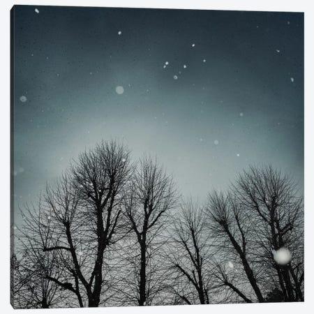 Winter Sky Canvas Print #AEI14} by Andre Eichman Canvas Art