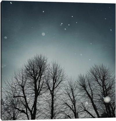Winter Sky Canvas Art Print