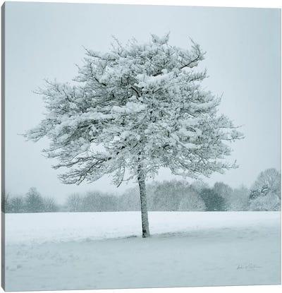 Winter Landscape IV Canvas Art Print