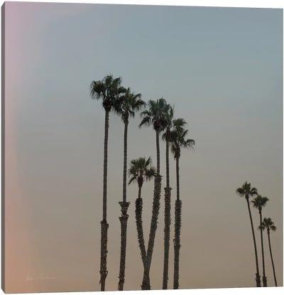 California Dreams II Canvas Art Print