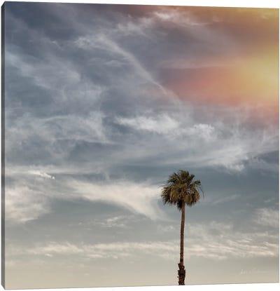 Sunny California Dreams Canvas Art Print