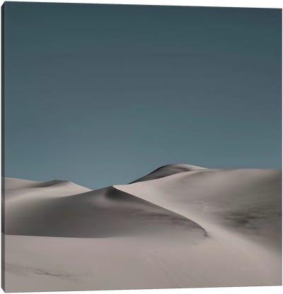 Sand Dunes II Canvas Art Print