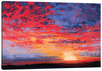 Sky Canvas Art Print