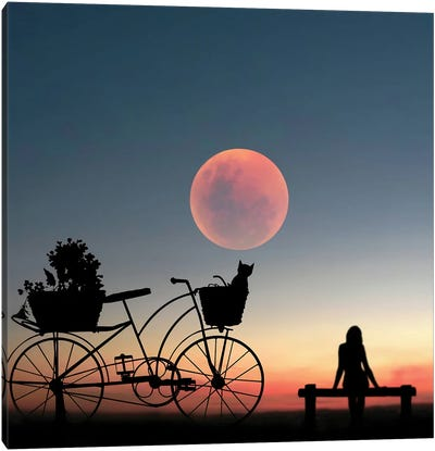 Girl On A Bicycle Canvas Art Print